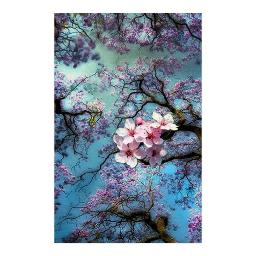 "Cherry blossomL Poster 23""x36"""