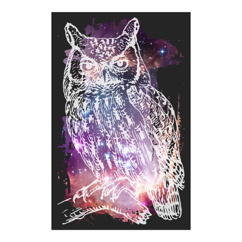 """Cosmic Owl - Galaxy - Hipster Poster 23""""x36"""""""