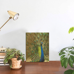 """Brilliant Peacock Photo Panel for Tabletop Display 6""""x8"""""""