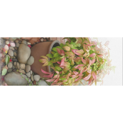 """Pot full of colors, floral watercolors, plant Gift Wrapping Paper 58""""x 23"""" (1 Roll)"""