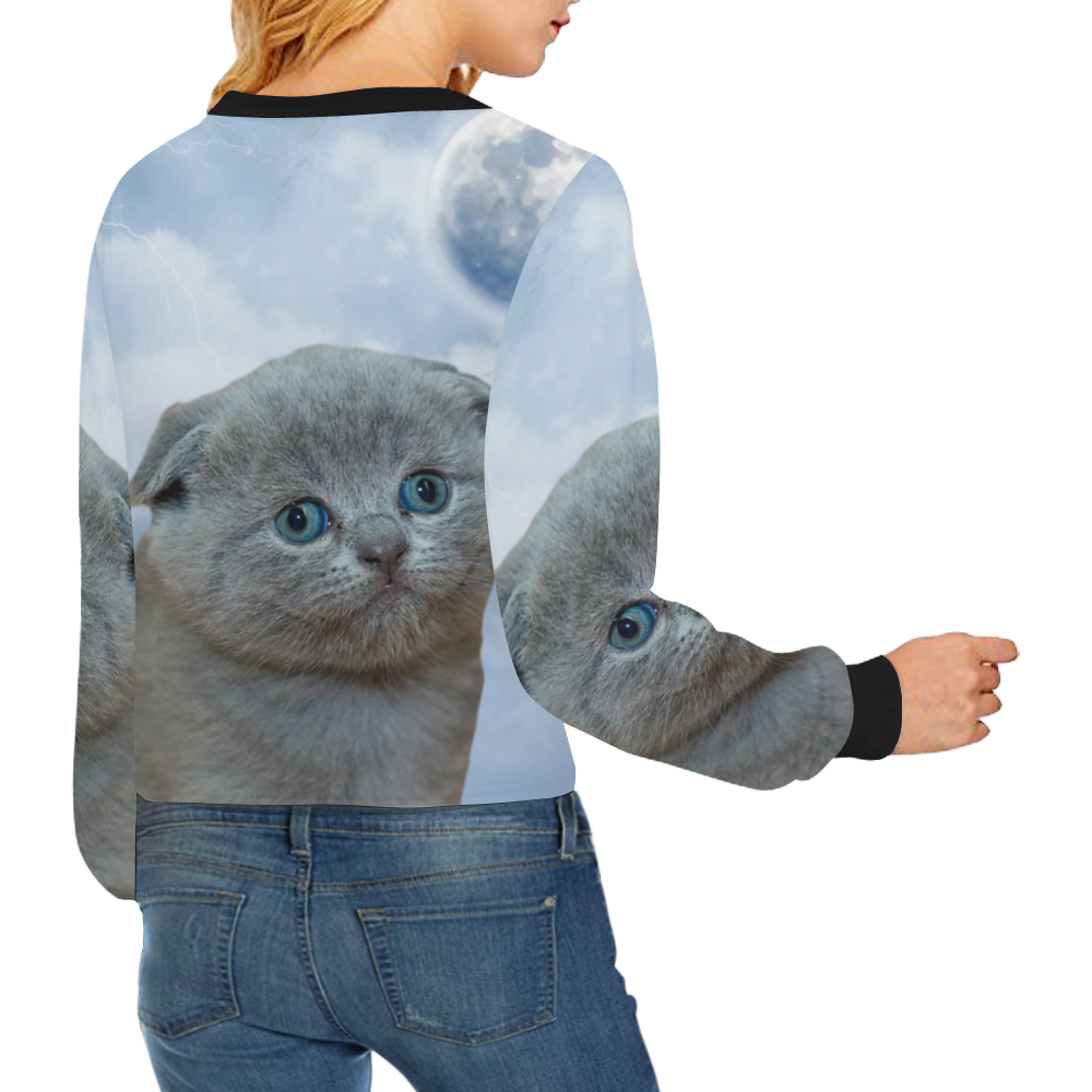 Lonely Little Kitty Crop Pullover Sweatshirts for Women (Model H20)