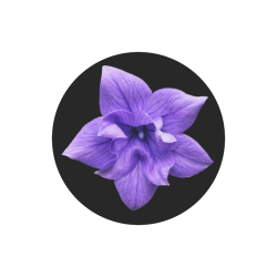 Balloon Flower Round Mousepad