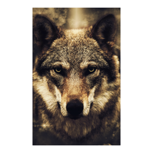 """Wolf 2 Animal Nature Poster 23""""x36"""""""