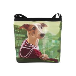 Coco chanel Crossbody Bags (Model 1613)