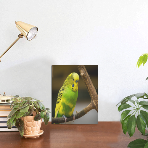"""Pretty Parakeet Photo Panel for Tabletop Display 6""""x8"""""""