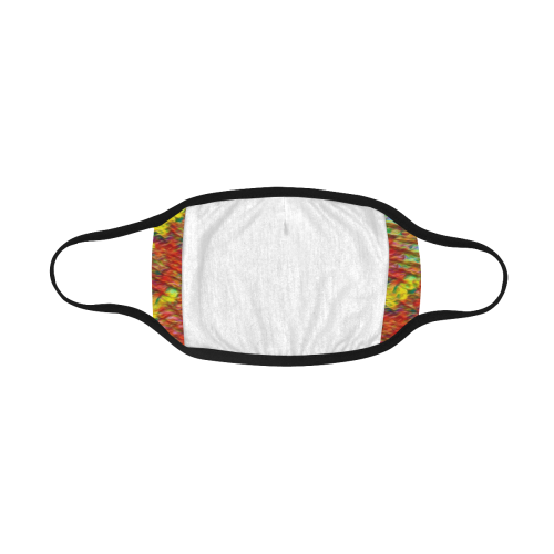 CAT MULTICOLOR MASK Mouth Mask