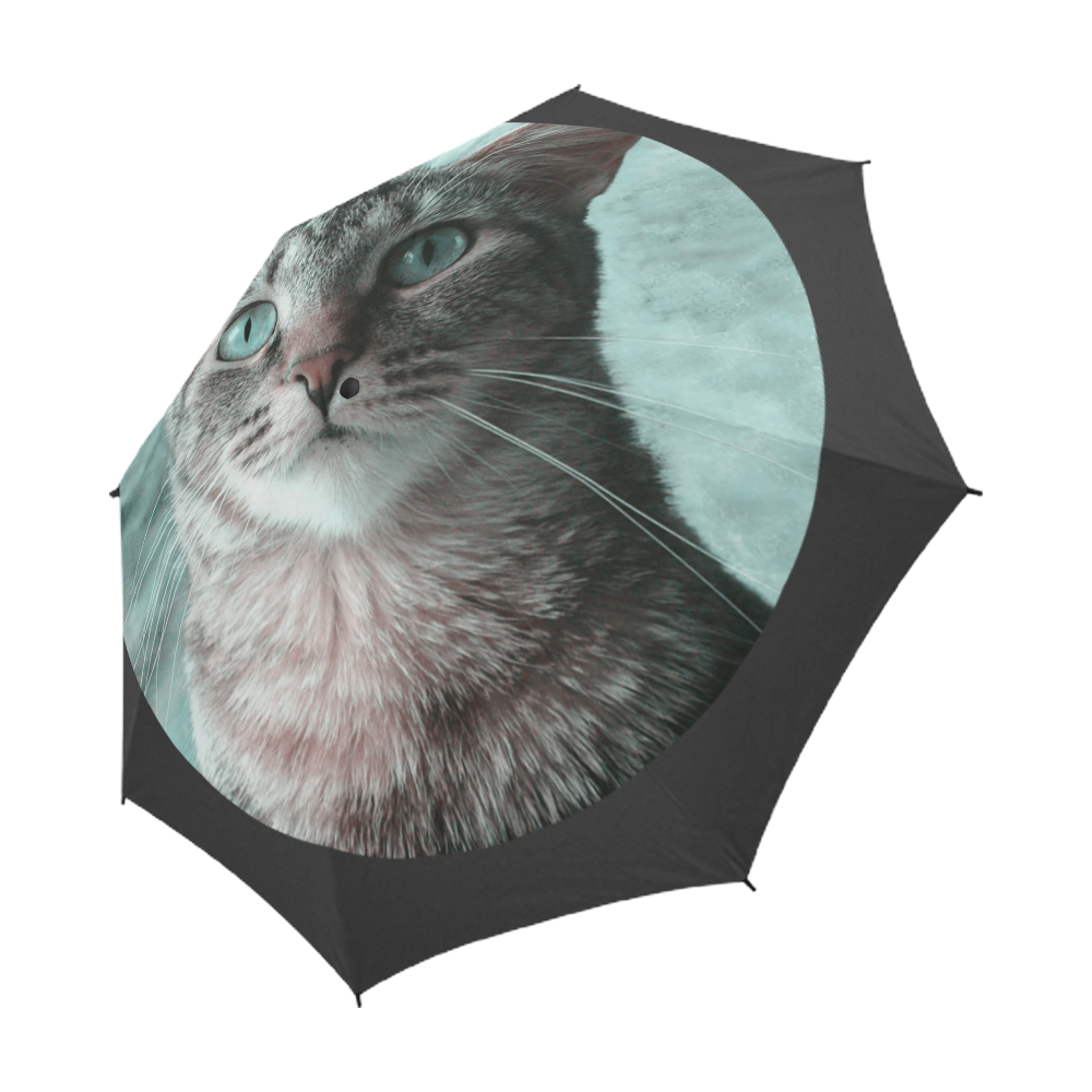 Tabby Eyes Semi-Automatic Foldable Umbrella (Model U05)