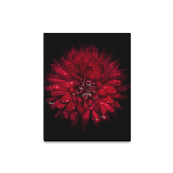 """Backyard Flowers 45 Color Version Canvas Print 16""""x20"""""""