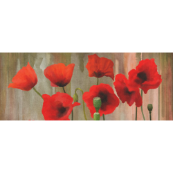 """Poppies Gift Wrapping Paper 58""""x 23"""" (1 Roll)"""